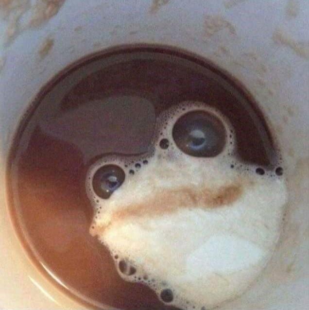 커피 속 개구리..jpg