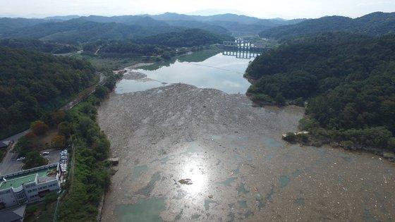 비만 오면 변신하는 댐들.8.jpg