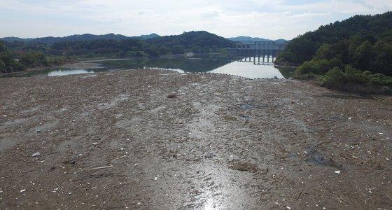비만 오면 변신하는 댐들.2.jpg