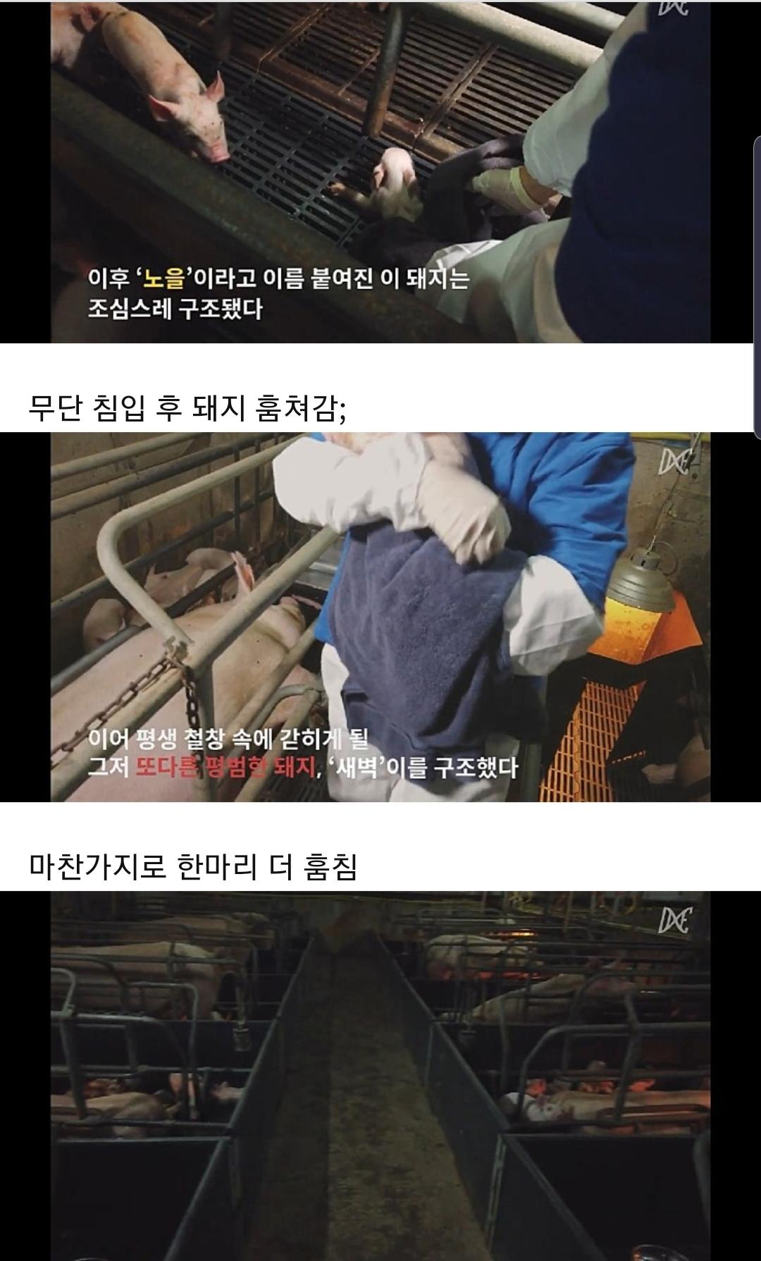 Screenshot_20190808-080811_Samsung Inter