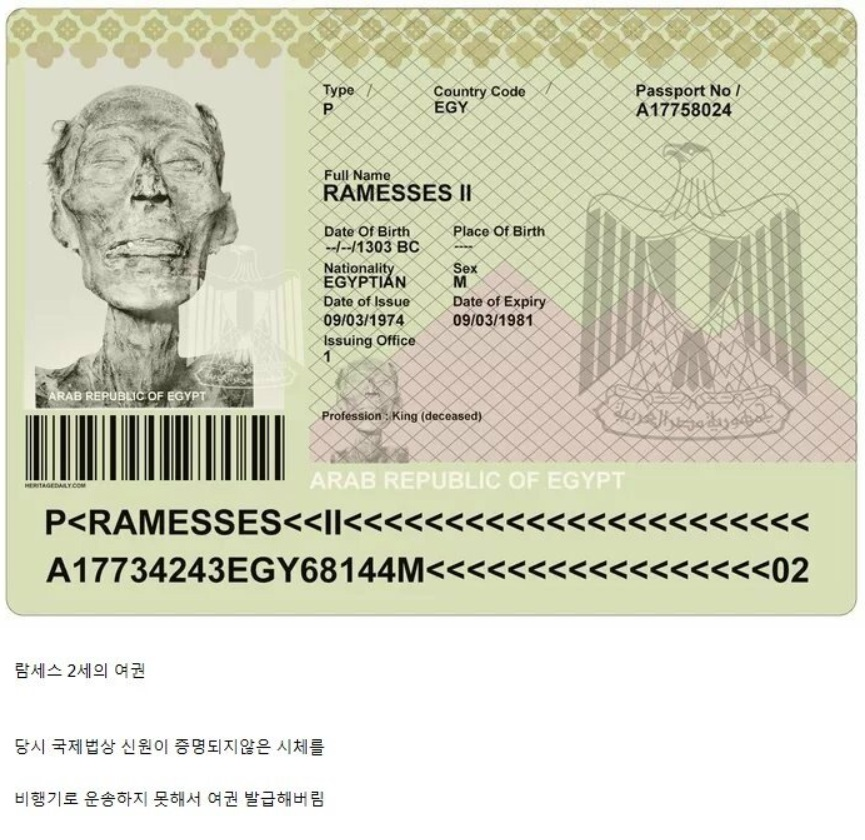 이집트 여권.jpg