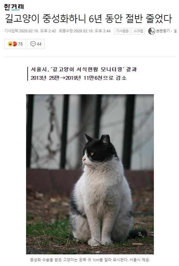 길고양이 중성화 사업 결과.jpg
